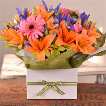 Boxed Arrangements