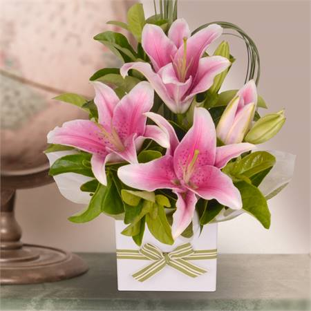 pink oriental flowers  sarah's flowers  your friendly florist, Beautiful flower