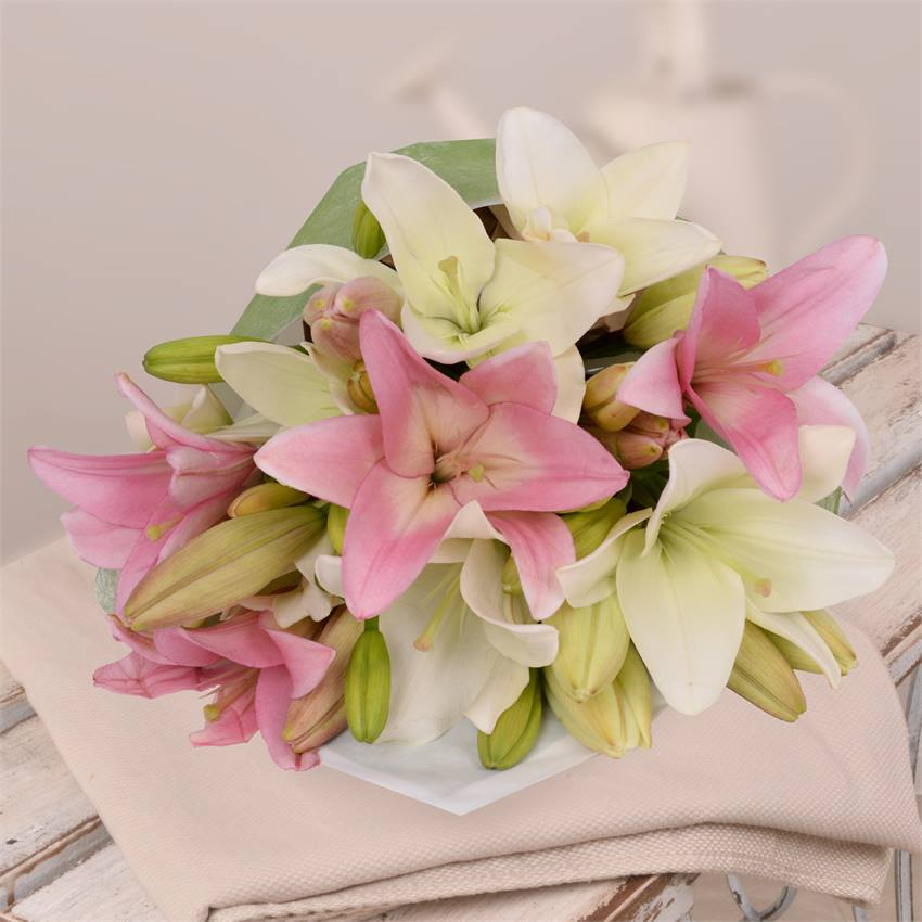 Lilies Mixed