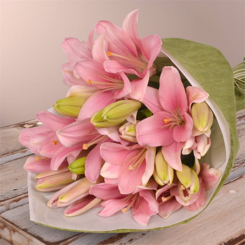 Lilies in Pink